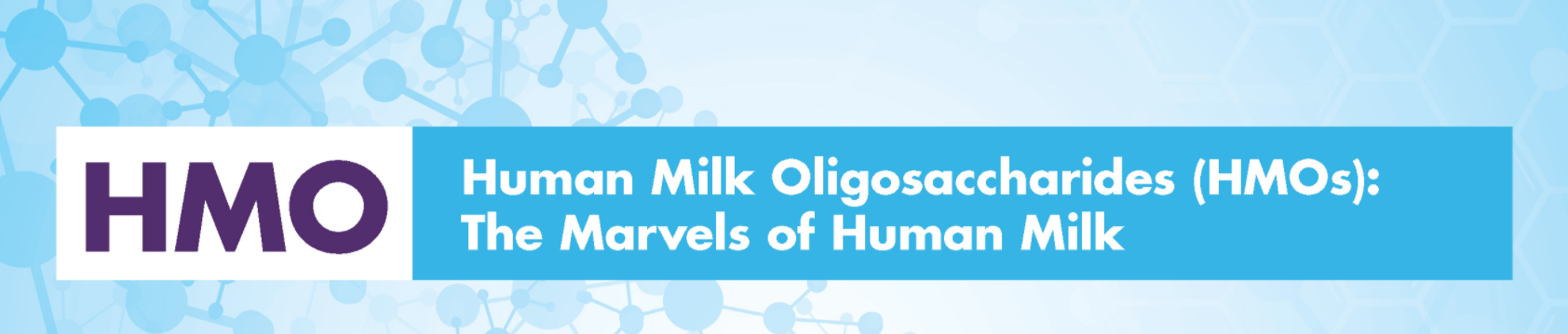 HMO Marvel webinar registration banner